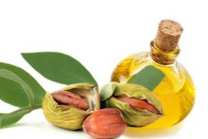 Jojobaöl- Eigenschaften und Anwendung