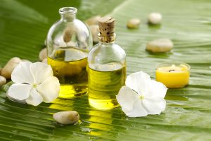 Lernen Sie einzigartige Öle kennen: Hanföl, Tamanu-Öl und Laurinöl